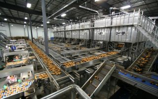 Bulk storage solutions. Potato Processing Machinery